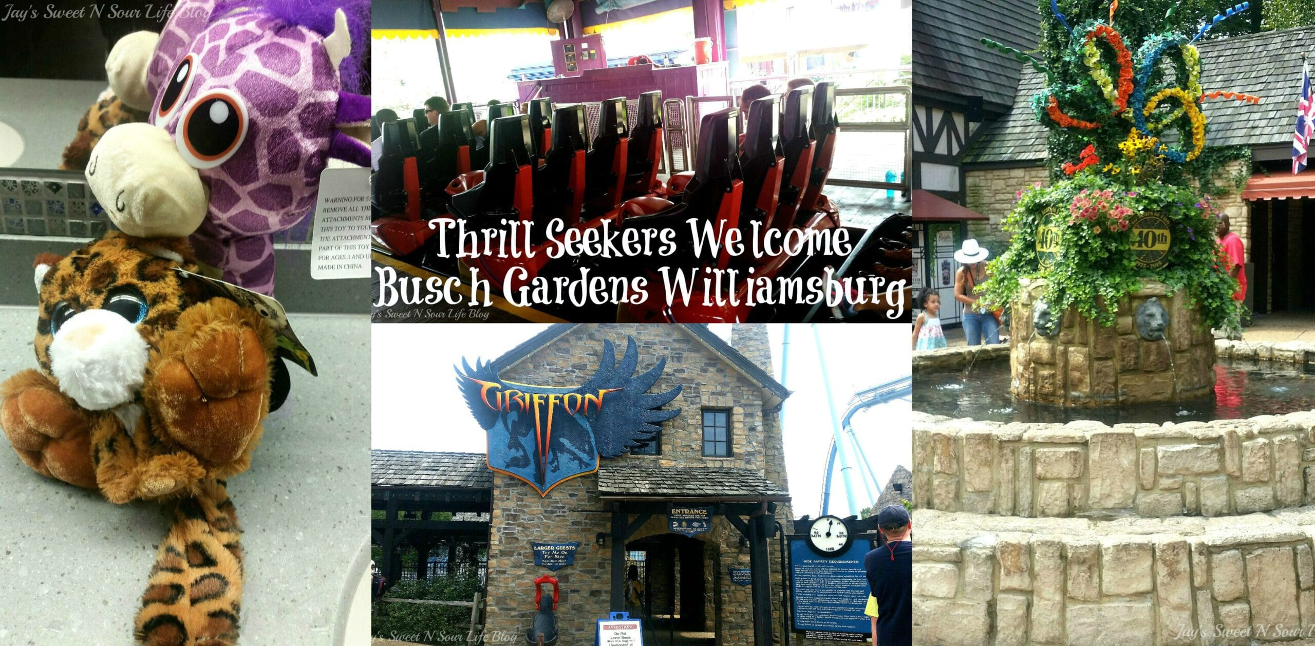 Thrill Seekers Welcome – Busch Gardens Williamsburg