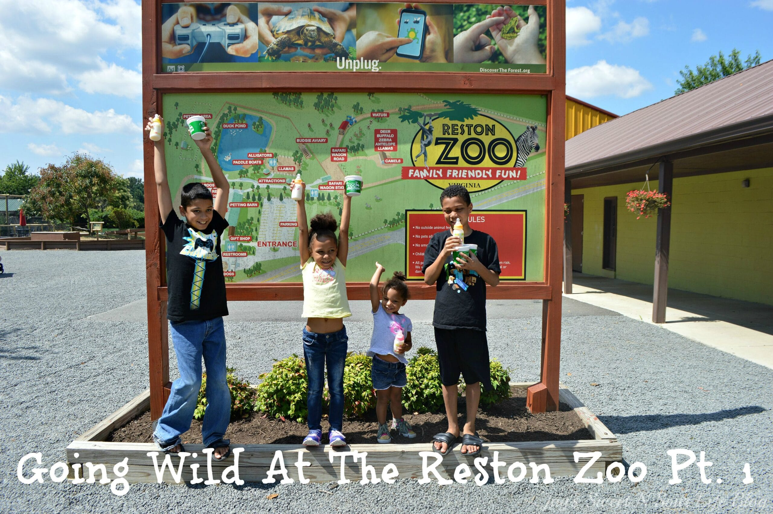 Going Wild At The Reston Zoo Pt. 1