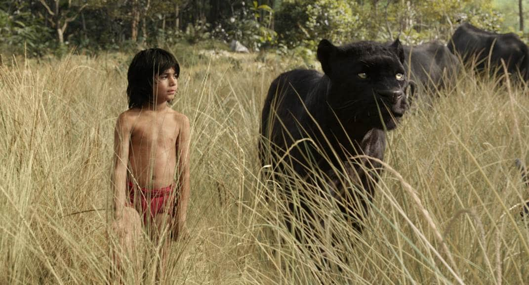 Disney's The Jungle Book – First Look At Offical Trailer! – In Theaters Everywhere April 15th 2016