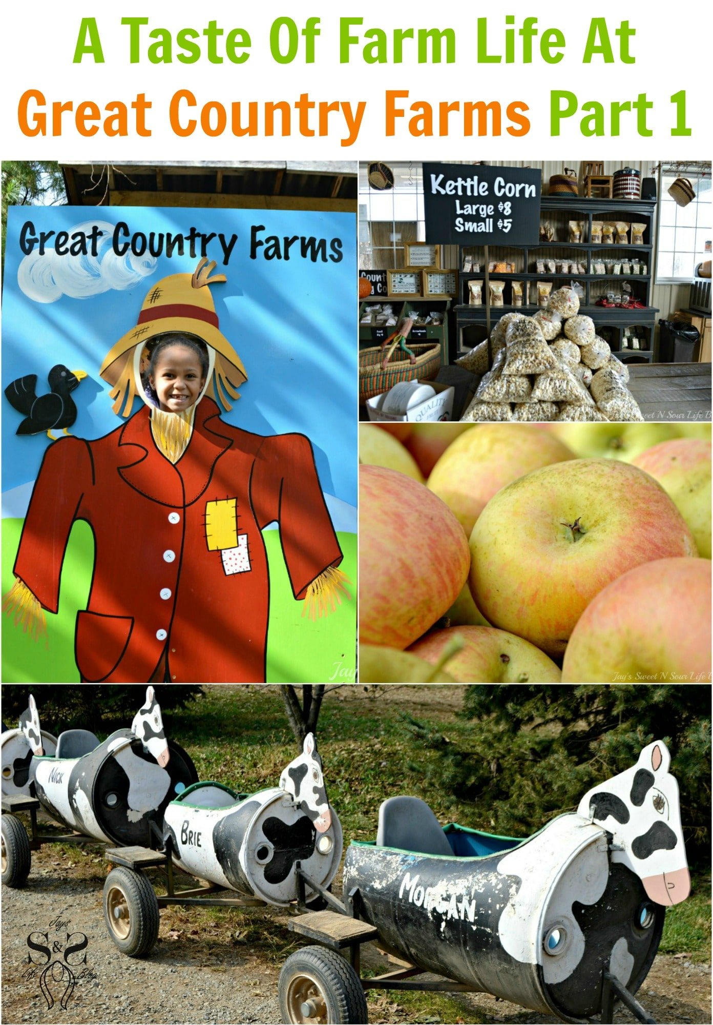 A Taste Of Farm Life At The Great Country Farms Part 1