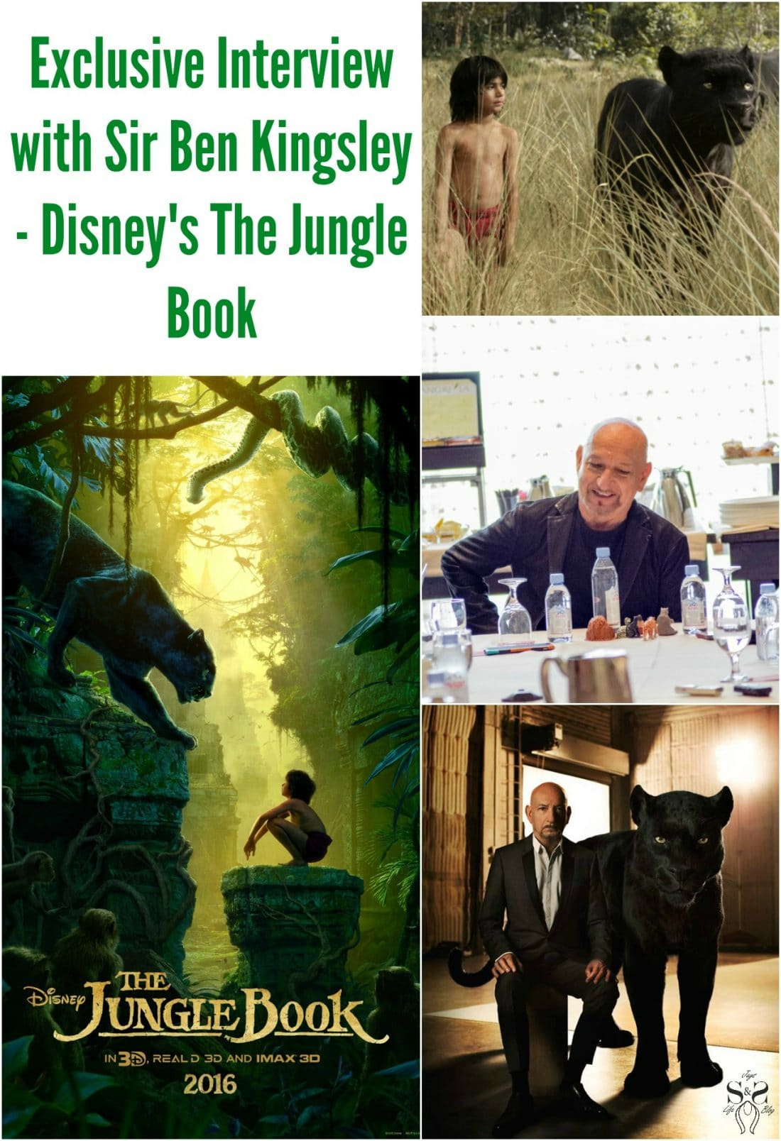 Read my exclusive interview with Sir Ben Kingsley, where we talk about his role as Bagheera in Disney's The Jungle Book. Now available on DVD, Blu-ray and Digital today.
