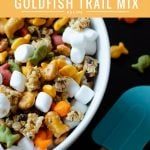 Goldfish crackers are my go-to! My families favorite on the go trail mix is sweet and oh so delicious. Try this Goldfish Trail Mix and take it on the go with your family to theme parks, parks, or your own back yard.