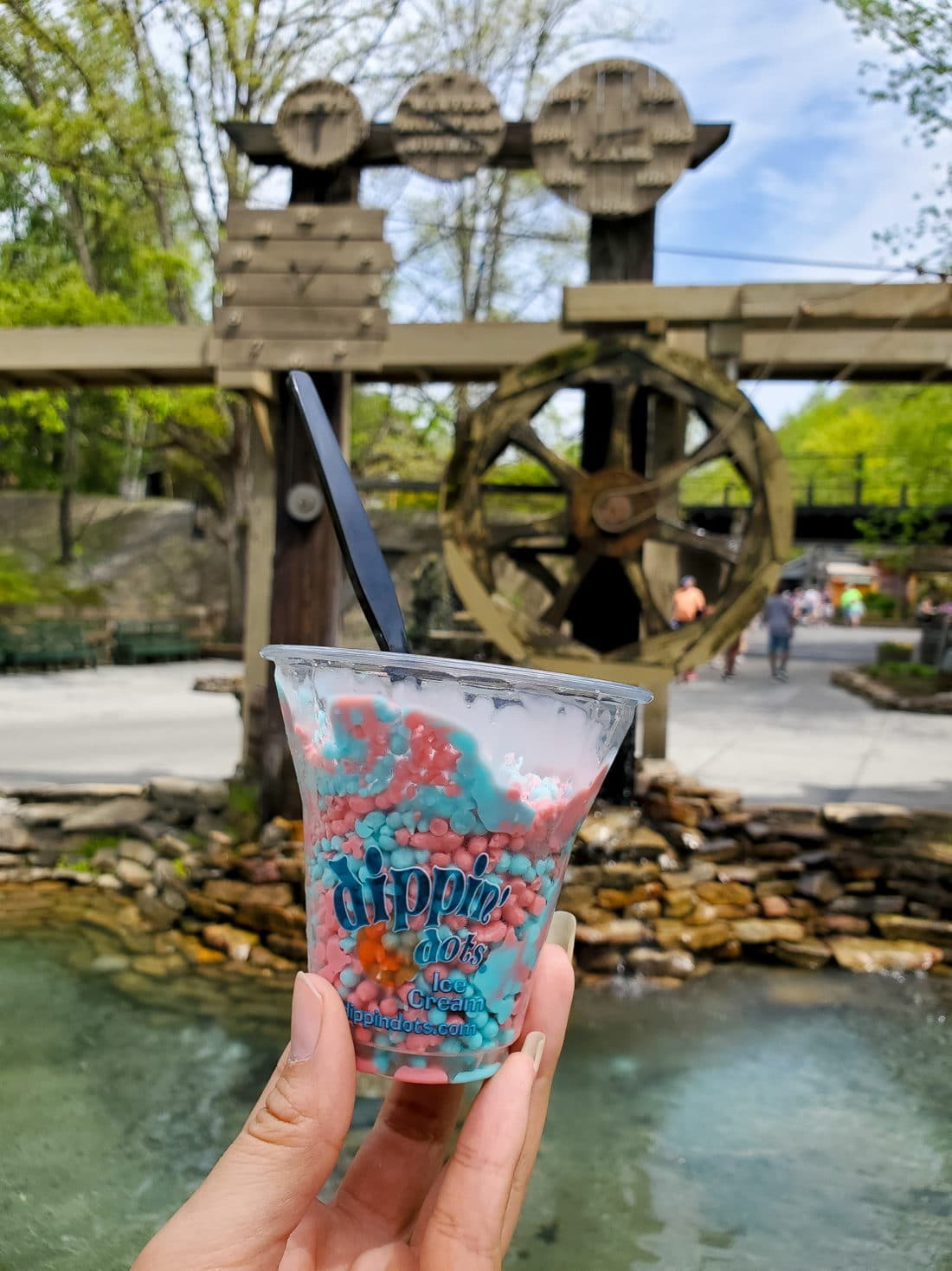 Dollywood Dippin Dots. My family spent the day playing and eating at the Dollywood theme park, and we are happy to report we had a blast! Read all about our trip and learn why Dollwood is a must visit destination while you are in Pigeon Forge, TN.