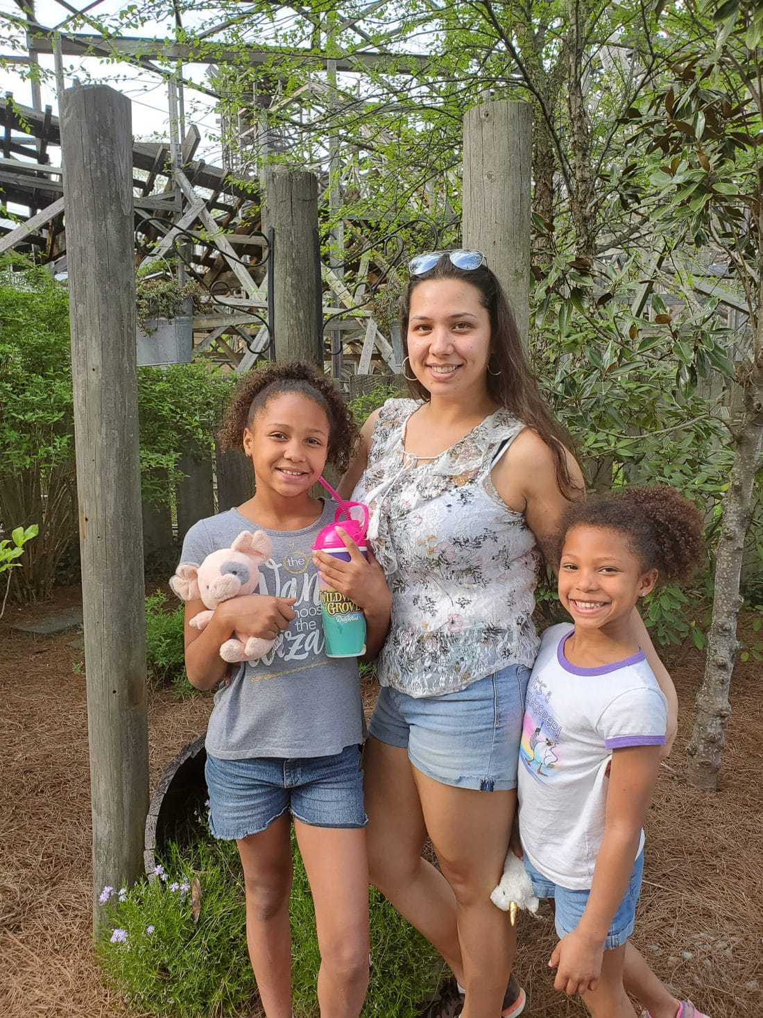 Dollywood Jay Family. My family spent the day playing and eating at the Dollywood theme park, and we are happy to report we had a blast! Read all about our trip and learn why Dollwood is a must visit destination while you are in Pigeon Forge, TN.