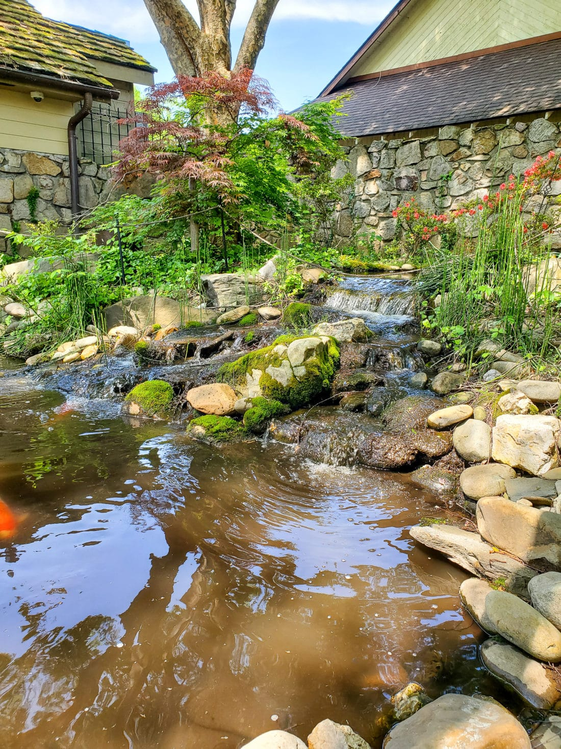 The Old Mill Pottery Cafe & Grille Pond. The Pottery House Cafe serves freshly made sandwiches, salads, and hearty entrees on dishes created by our potters right next door. Read my full review which includes photos of this beautiful and delicious location in Pigeon Forge, TN.