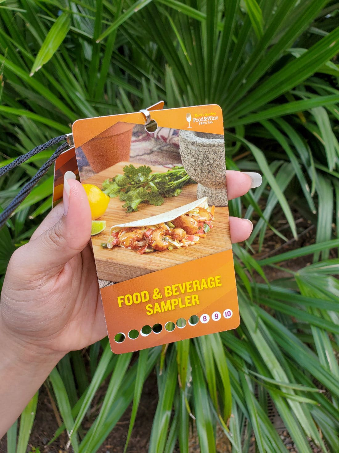 Busch Gardens Food and Wine Festival 2019 Food Sampler Card. Enjoy some delicious food and drinks at the annual Busch Gardens Food and Wine Festival 2019. Featuring 4 new food kiosks and drink stations, there is something for the whole family to enjoy!