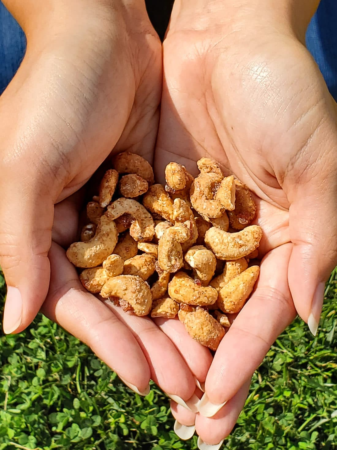 Sahale Snacks Pomegrante Vanilla Flavored Cashews Closeup. Snack easy with Sahale snacks, they are the delicious option that fit seemlessly into your everyday lives. Sahale Snacks use unique combinations and layers of flavor with real ingredients to elevate your everyday snacking experience.