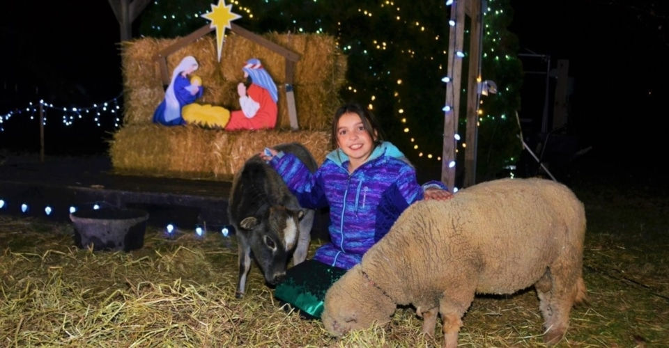 Christmas Village at Leesburg Animal Park. Celebrate the holidays with your animal friends at Leesburg Animal Park in Loudoun County. During three weekends in December, the park features an evening Christmas Village event.