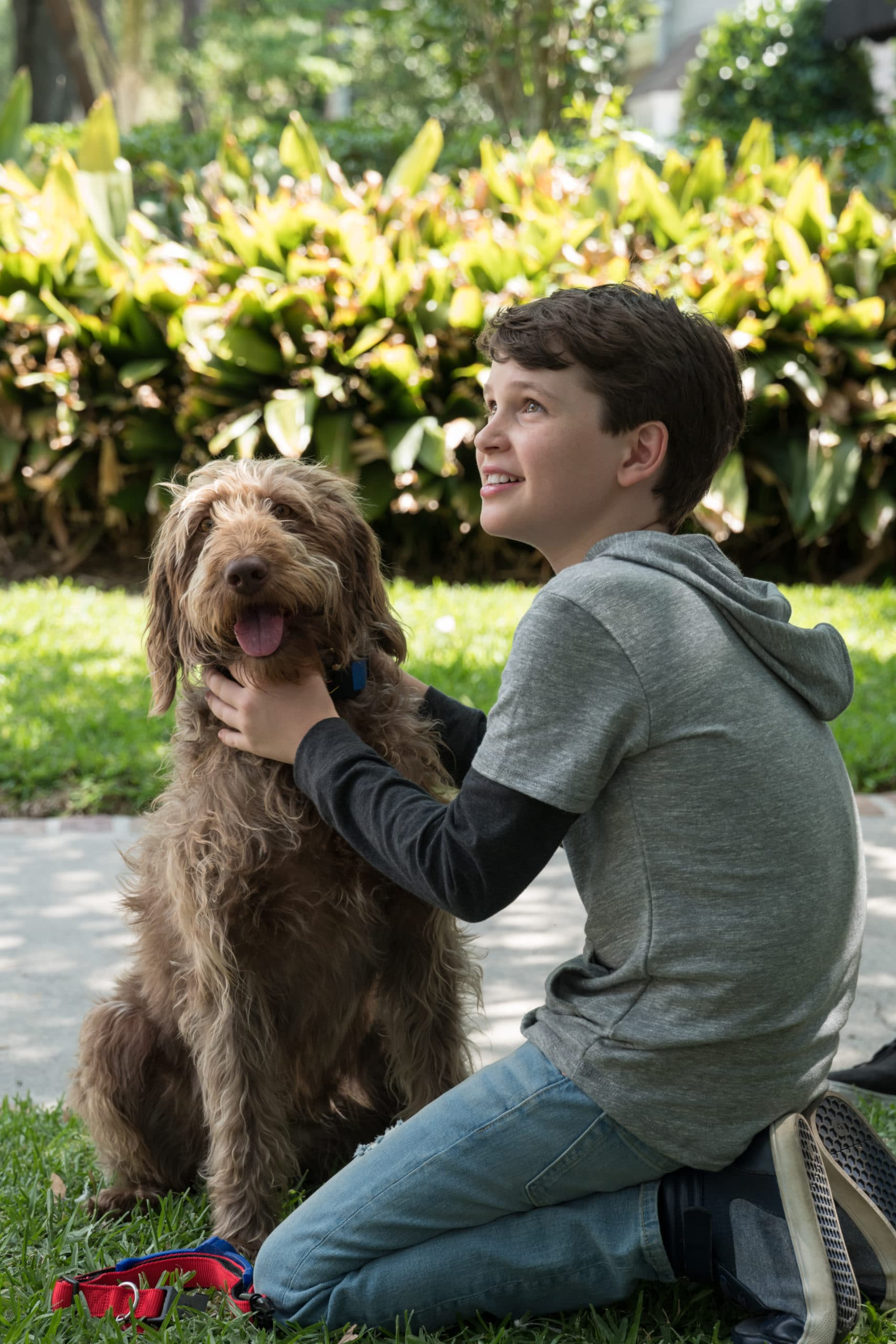 Thinks Like a Dog Friends. It's time to give canines some love! Don't miss the paws-itively heartwarming family comedyThink Like a Dog, premiering on Digital, and On Demand June 9 from Lionsgate.