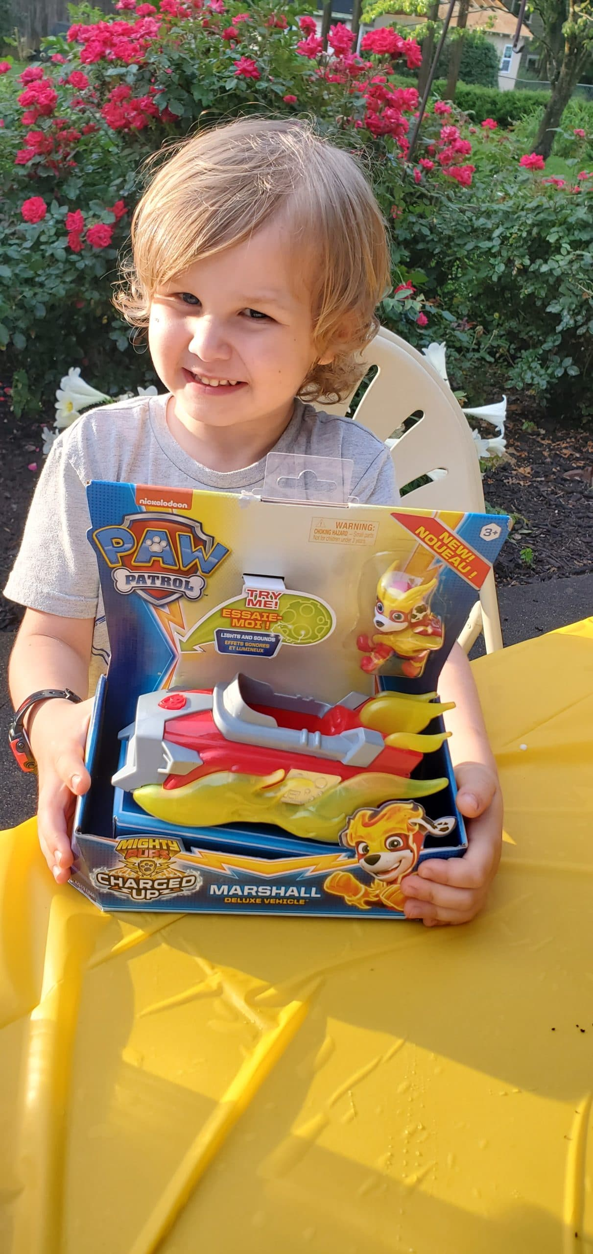 PAW Patrol: Mighty Pups Charged Up Toy. The paw-some Mighty Pups are back for next level action-packed adventures inPAW Patrol: Mighty Pups Charged Up. Checkout all of the fun toys and actvities we recieved in our Puptastic box today!