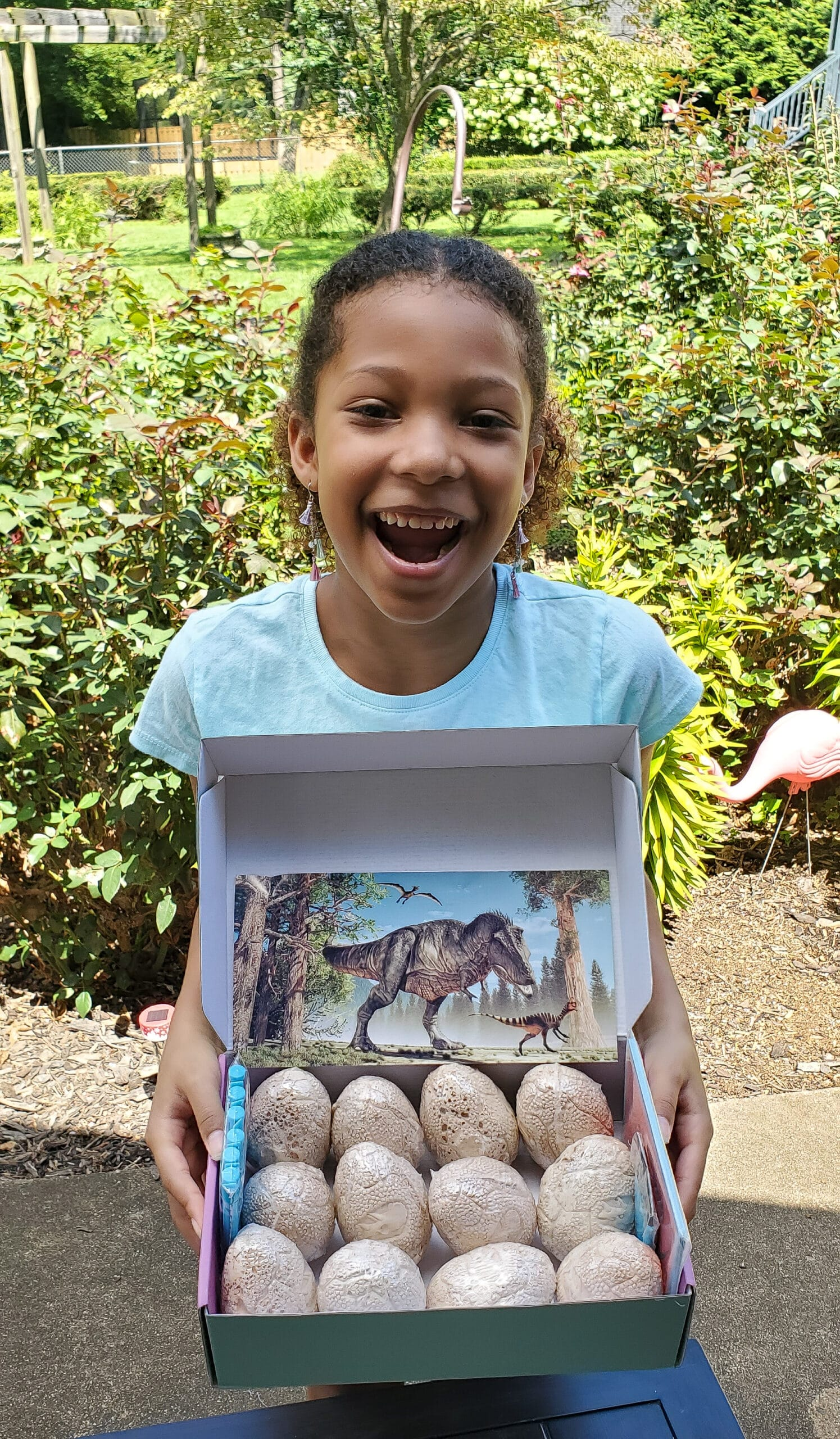 Dinosaur Eggs Esuun. Get ready forroars and rescues withthePAW Patrolinthe brand-newDVDPAW Patrol: Dino Rescue. We received a special package in honor of this awesome DVD release. Inside we found some awesome surprises that we can't wait to share with you.