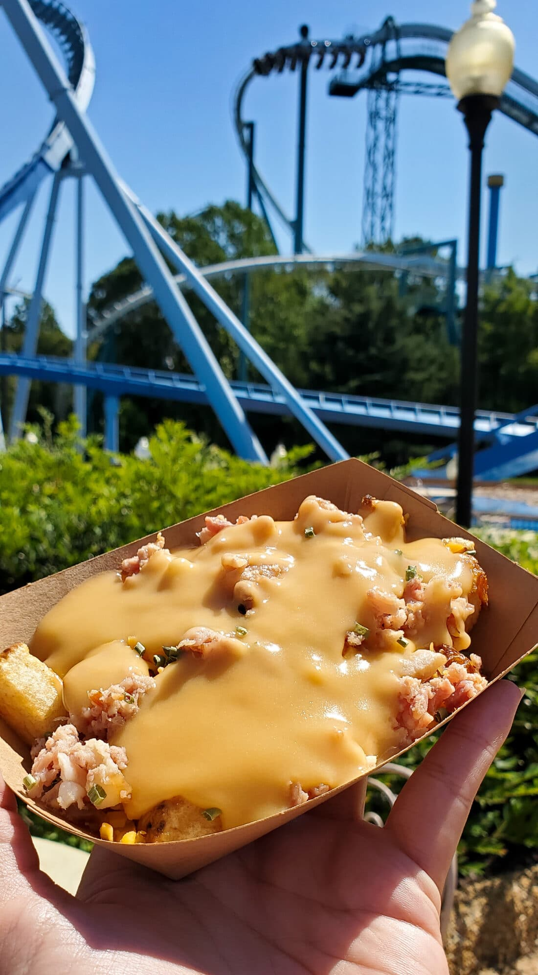 Taste of Busch Gardens Irish Fries. Sip, sample, and soar at this limited-capacity during the Taste of Busch Gardens special event in Williamsburg, VA. Select areas of the park will be open so there is plenty of room to safely enjoy specialty food and drinks as you stroll through our 6 charming villages.