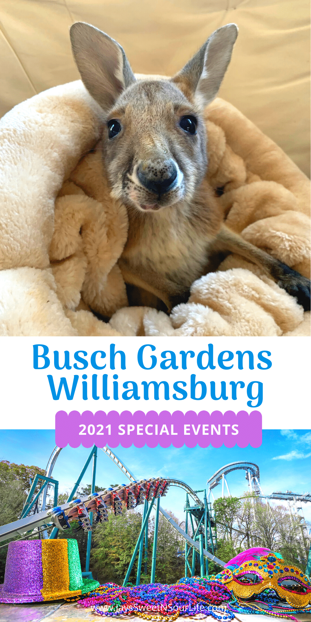 Busch Gardens Williamsburg 2021 Special Events. Enjoy the new Busch Gardens Williamsburg 2021 special events that offer socially distanced fun and entertainment all year long. Busch Gardens will be the place for all things fun, new, and safe in 2021.