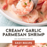 Creamy garlic parmesan shrimp is the perfect weeknight dinner recipe. Ready in just minutes, this quick and easy shrimp recipe goes great with a fresh salad or on top of your favorite pasta.