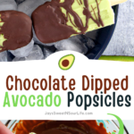These creamy avocado popsicles are hand-dipped into dark chocolate, the perfect refreshing hot summer day treat. This easy, creamy, and delicious Chocolate Dipped Avocado Popsicle recipe is perfect for pool parties and group get-togethers.